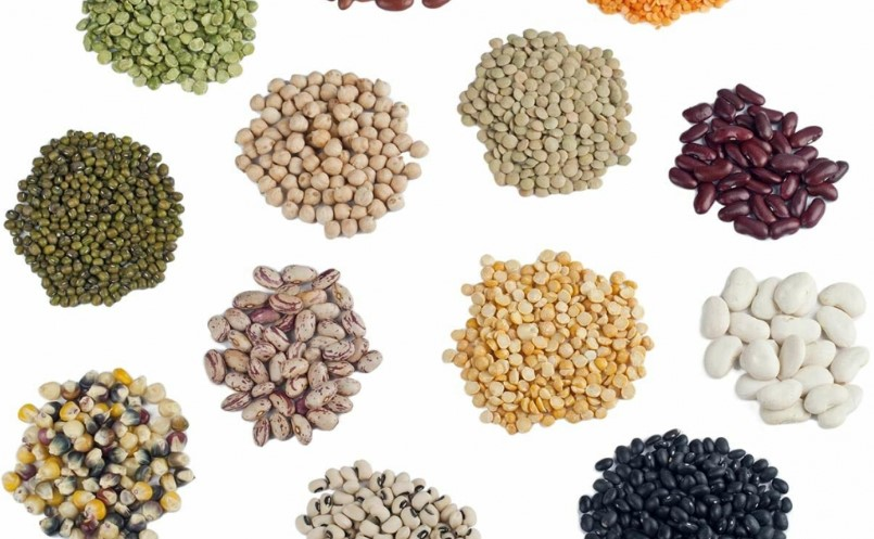 Types of Seeds to Plant